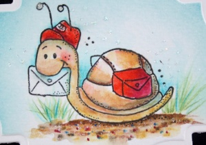 snail-mail-close-up